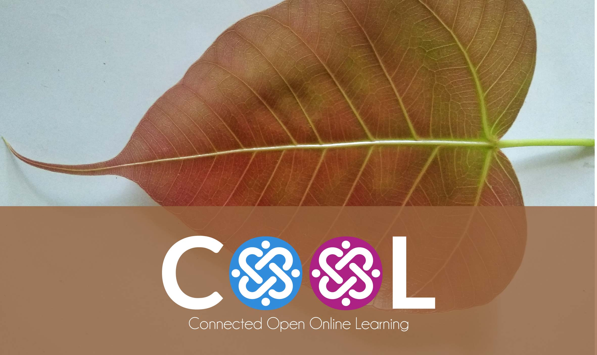COOLSCI01 - Resources for Science Education - 2020 English 2020_COOL_SCI_EN_01